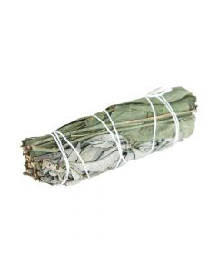 White Sage & Eucalyptus Smudge Stick - Herbal Remedies & Edibles