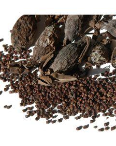 West African Alligator Pepper (Melegueta Pepper / Aframomum melegueta) - 5 pieces