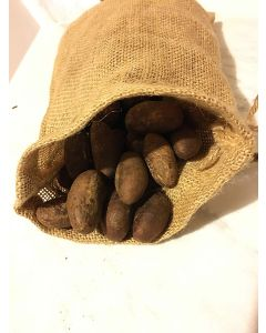 African fresh Organic BITTER KOLA (Garcinia Kola) in HGU Protective Bag - Authentic KOLA Nuts with Bag - 0.5 Lbs