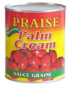 Praise – Palm Cream – Convenient Creamy Palm Nut or Palmnut Soup Base - Concentrated Palm Nut Fruit - 800g