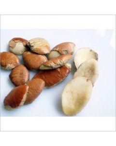 Ukwa Seeds (African BreadFruit / Treculia Africana) - 1lb
